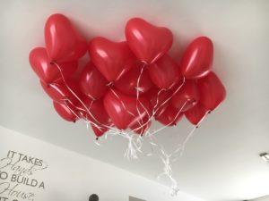 Een themafeest samen met ballonnenhondje.