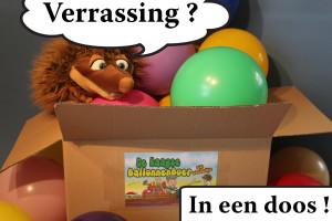 Verrassingsdoos van de Haagse Ballonnenboer